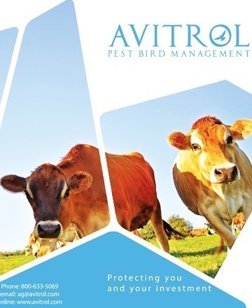 Agricultural Benefits of Using Avitrol
