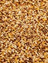 Avitrol Untreated Mixed Grains